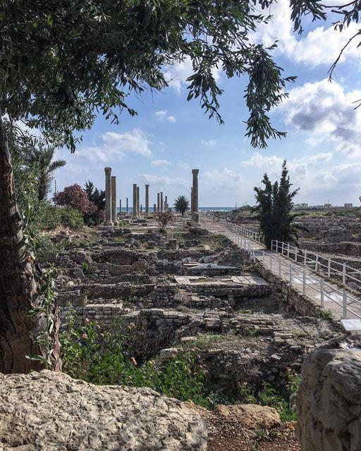 In Absentia .... natura historicalcity neverstopexploring sky_captures... (Tyre, Lebanon)