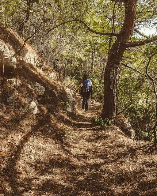 Baakline, Lebanon lebanon hiking nature outdoors livelovelebanon ... (Baakline, Mont-Liban, Lebanon)
