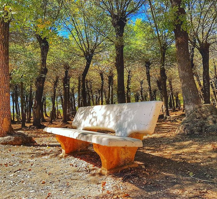 Where love stories begin nature naturephotography peaceful place ... (Jesuit Convent Deyr Taanayel - دير سيدة التعزية للآباء اليسوعيين)