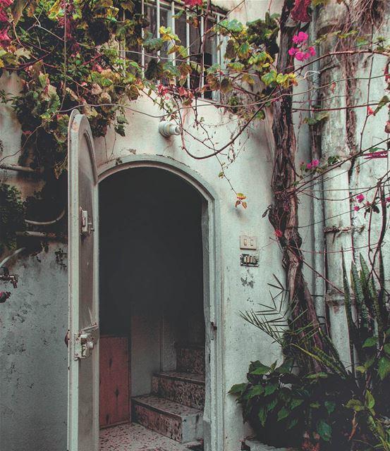 ɪɴ ʟᴏᴠᴇ ᴡɪᴛʜ ᴏʟᴅ ʜᴏᴜsᴇs 🏡🏡... (Saïda, Al Janub, Lebanon)