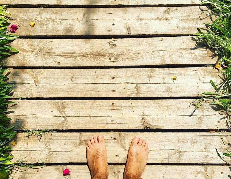 Walk As If You Are Kissing The Earth With Your Feet. lazyb lazy beach ... (Lazy B)