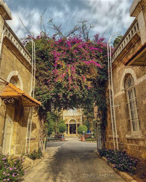 🌹🌸____________ 961lens usjliban architecture archilovers ... (Université Saint-Joseph de Beyrouth - USJ)