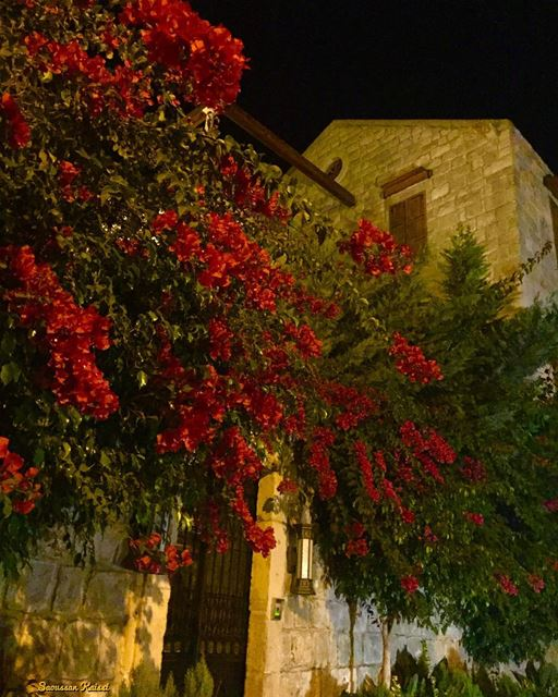 now tonight lebanonhouses heritage nostalgia architecture beautiful...