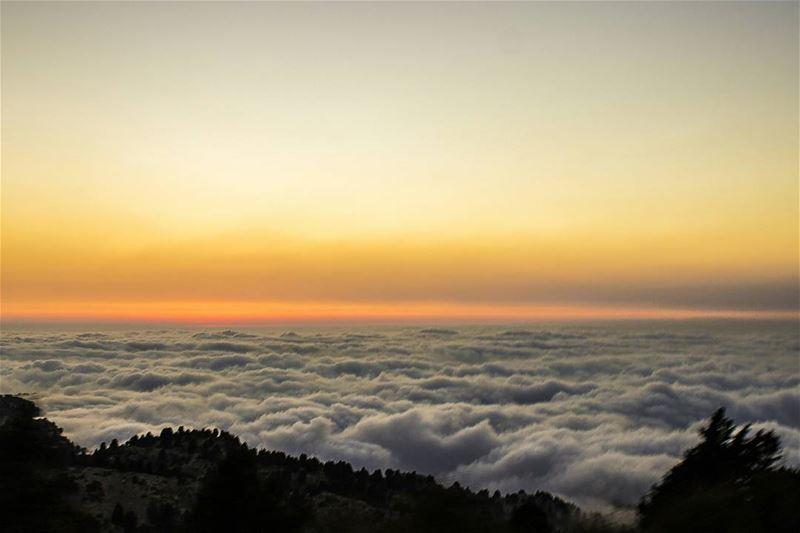 1400m high...☁🙌 (El Qammoûaa)