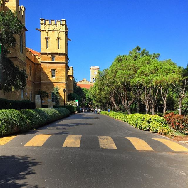 Monday 😎 aublebanon liveloveaub livelovebeirut lebanonspotlights... (American University of Beirut (AUB))