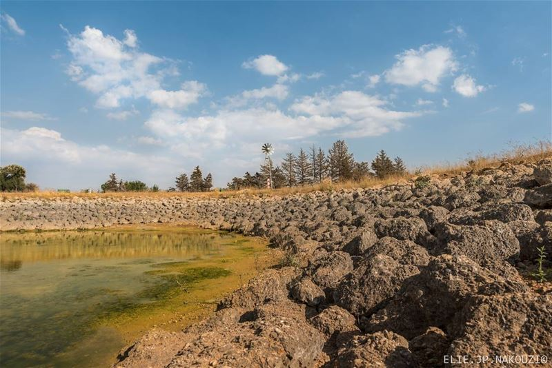 How many raindrops does it take to fill a Lake of water? Is it hundreds,... (Taanayel- Bekaa)