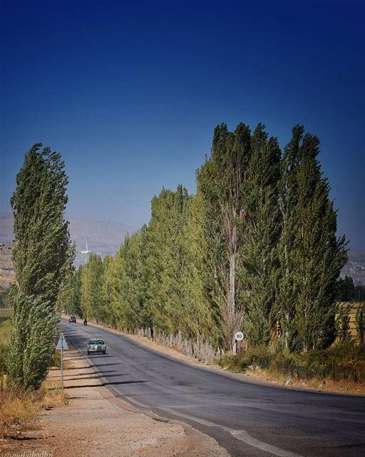ليس المهم ان تمشي ببطأ، انما المهم ان لا تتوقف👌👌 lebanon photography ...