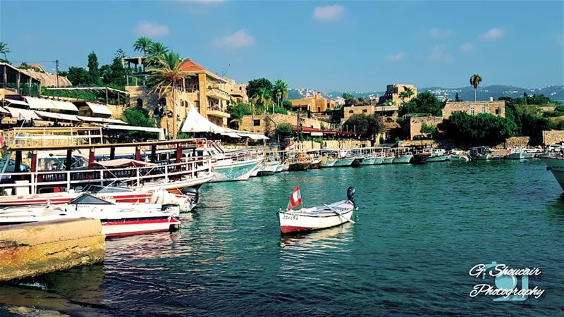 The wonderful historical Byblos Port______🔴⚪⚪🌲⚪⚪🔴______... (Port Byblos)