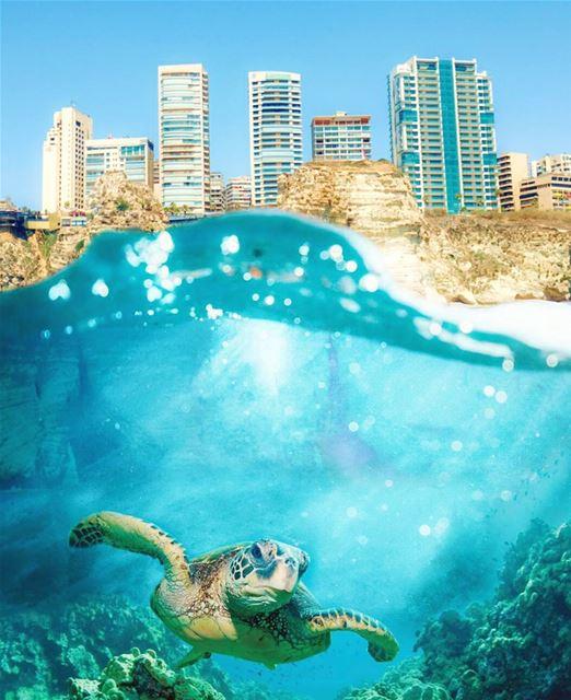 Dream higher than the sky , and deeper than the Ocean ...... (Ar Rawshah, Beyrouth, Lebanon)