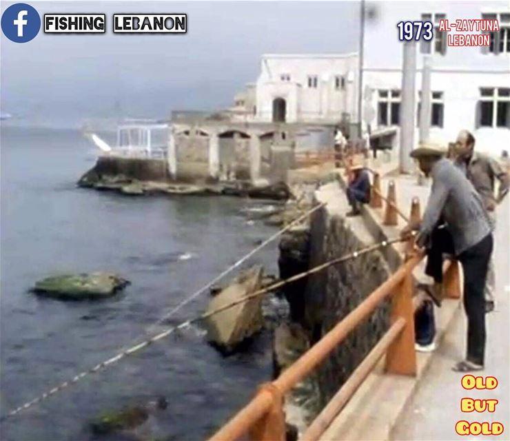 @fishinglebanon - @instagramfishing @jiggingworld @gtbuster @offshorelifest (Beirut, Lebanon)