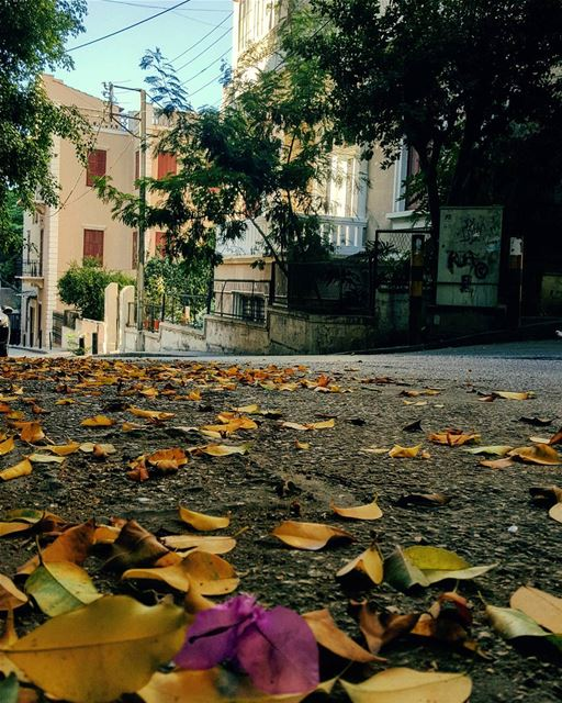 A Rendez-vous with october.. 🍂🍁🍃When in my Beirut.. tbt missing... (Beirut, Lebanon)