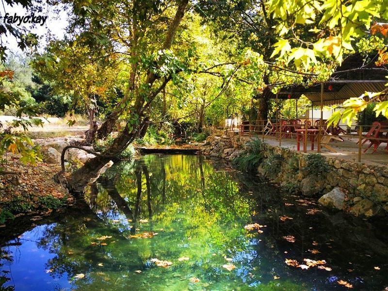 nature naturelovers naturephotography natureshot autumn river instagood ... (Chouf)