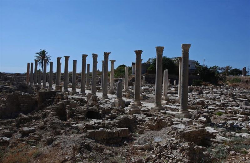 Tyre archaeological site. Check out the video 🎥 of this amazing place by... (Soûr, Al Janub, Lebanon)
