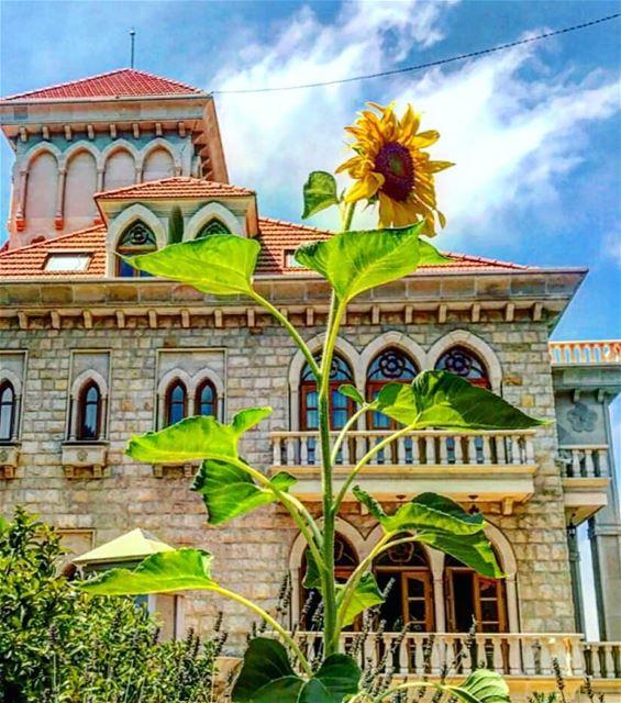 Happy weekend everyone 🌻💚 aley lebanon livelovebeirut livelovealey ... (Aaley, Mont-Liban, Lebanon)