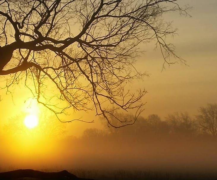 Happy Friday everyone 🌞💛New morning, New day. zahle sunrise ... (Zahlé, Lebanon)