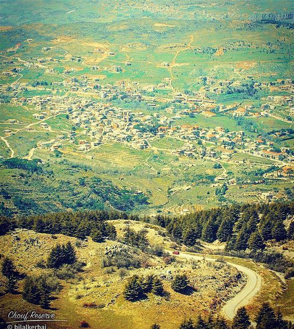 Barouk cedars chouf lebanon beirut... (Arz el Bâroûk)