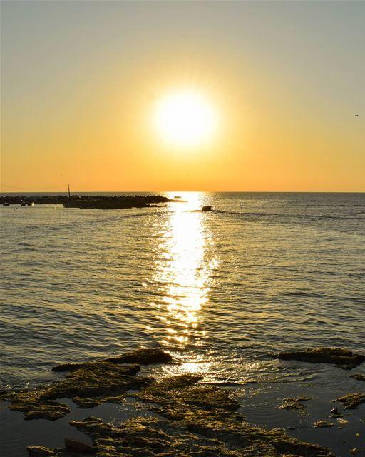 Chase the horizon 🌅 rookietographer ...... lebanon boats sunsets... (Tripoli, Lebanon)