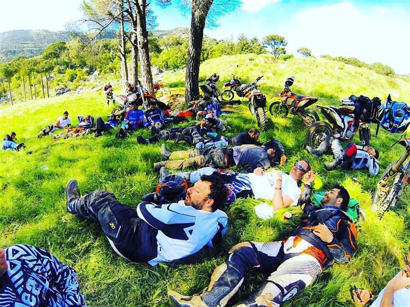 morning  wolfpack  gopro  maraja  praia  heaven  ktm  greenday  team ...