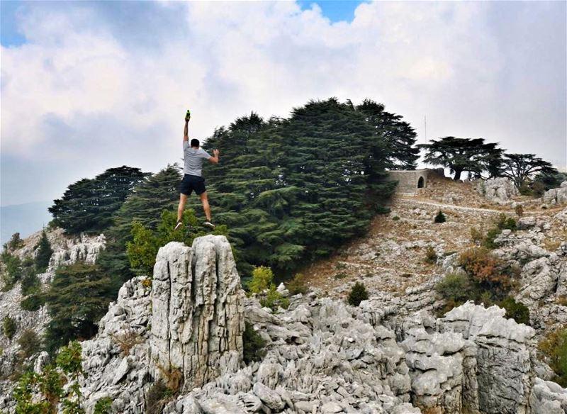 The Cedars of Jaj (Jurd Jbeil) are One of the Oldest Cedars in the World,... (Arez Jaj)