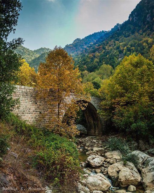 hiking hikingadventures wadielsalib valley bridge oldbridge autumn ...