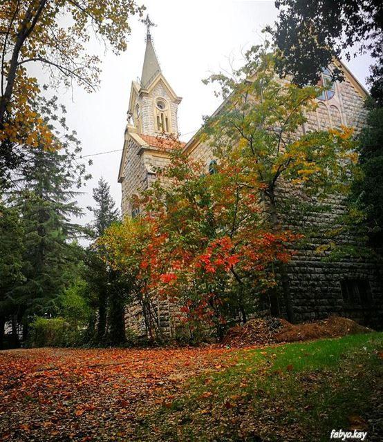 autumn nature naturelovers autumn🍁 lebanonspotlights lebanontimes like... (Mount Lebanon Governorate)