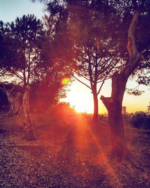 lebanon lebanon_hdr livelovelebanon sunset sunsettime wearelebanon ... (Deïr Mâr Roukôz, Mont-Liban, Lebanon)