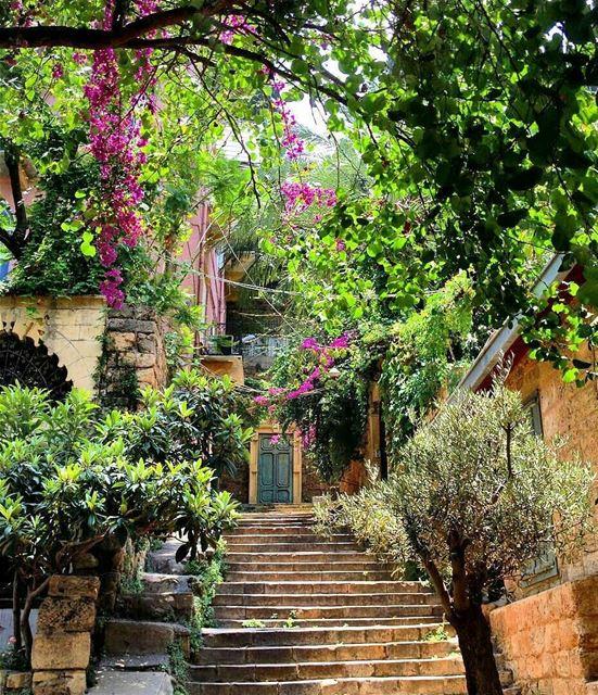 The soul that sees beauty may sometimes walk alone ~Johann.W.V.GoetheGood... (Jemmayze)