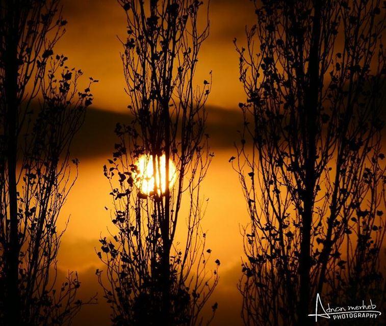 sunset sunrise sun socialenvy PleaseForgiveMe pretty beautiful red... (Bardé, Liban-Nord, Lebanon)