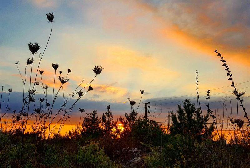 sky sunset sunsetsky sunset_ig lebanoninapicture ptk_lebanon ... (Kornet Chehwen 1526)