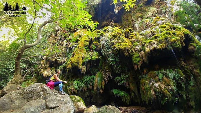 Green valley 🍃Event this Sunday --> Hiking to Wadi Qannoubine... (Wadi Qannubin, Liban-Nord, Lebanon)