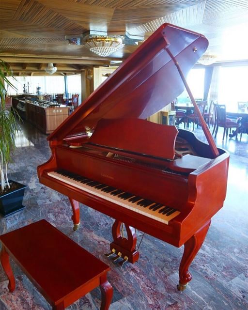 """Music is the soul of Life.""🎼 PianoBar CozyHotels Views LobbyLounge ... (Bay Lodge)"