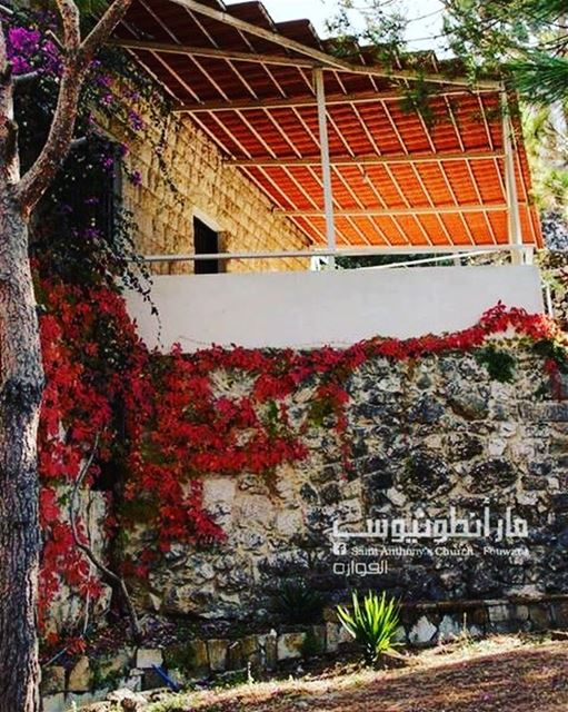 autumn fall fouwara fouara chouf lebanon instalebanon oldhouse ...