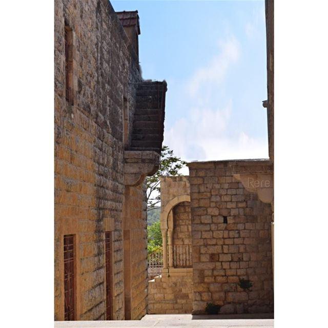 جميلة هي تلك الافكار التي تلفح مدينة الذكريات لدينا...ريم🦋... (Al Shouf Cedar Nature Reserve)