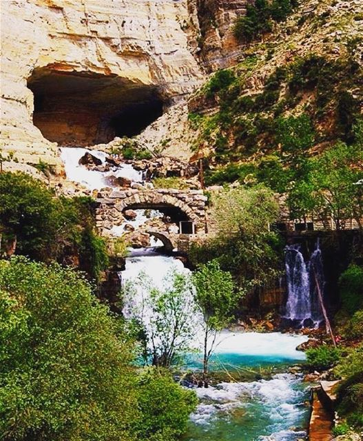 afqa nabaafqa afqawaterfall northlebanon lebanon livelovelebanon ... (Nabaa Afqa)