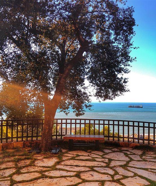 Good Morning 😊 lebanon nature naturelovers natureporn landscape ... (Zouk Mosbeh)