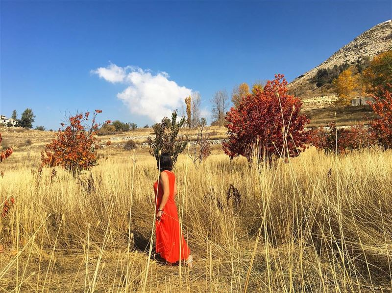 Another one shot by @amanyabisemaan Loving Laklouk's colors 🍁🍁🍁...... (El Laklouk, Mont-Liban, Lebanon)
