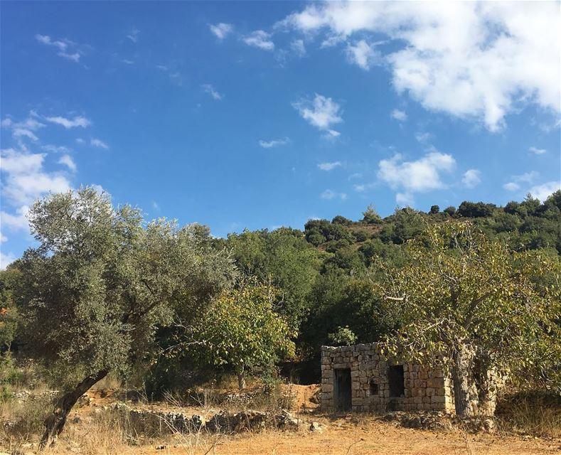 💚...... lebanonspotlights thisismycommunity nationalart ... (Jebrâyel, Liban-Nord, Lebanon)