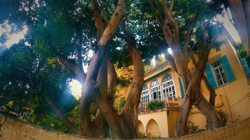يا ست الدنيا ❤️ بيروت beirut gemmayze lebanon livelovelebanon ... (بيروت الجميزة)