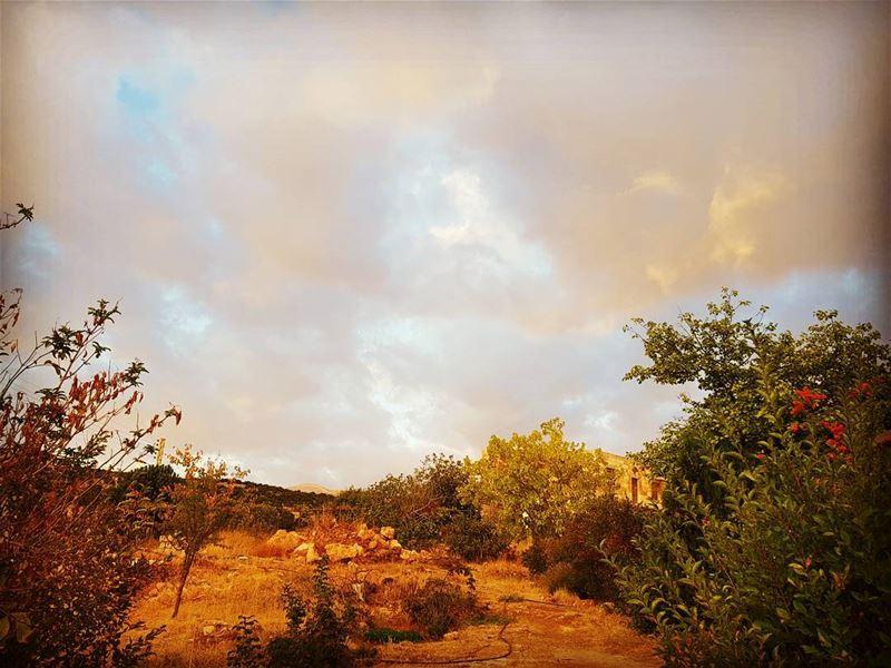 No filter autumn autumn🍁 btedhi deirelahmar bekaavalley bekaa ... (Al Dayaa الضيعة)
