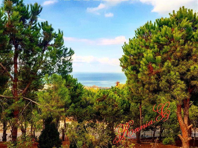maghdouche sayditlmantara amazingandblessedday wonderfulplace ... (Maghdoûché, Liban-Sud, Lebanon)