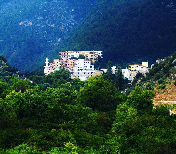 ouyounelsamak ouyounalsamak north lebanon nature livelovelebanon ... (3youn el Samak)