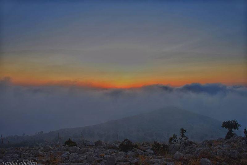 ان لم تستطع التحرر من مخاوفك وشكوكك، فلن تكتشف ابداً مدى روعة الحياة من دون (جبل الشيخ)