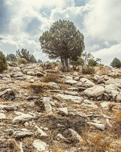Location : North Lebanon lebanon hiking nature outdoors ... (Lebanon)