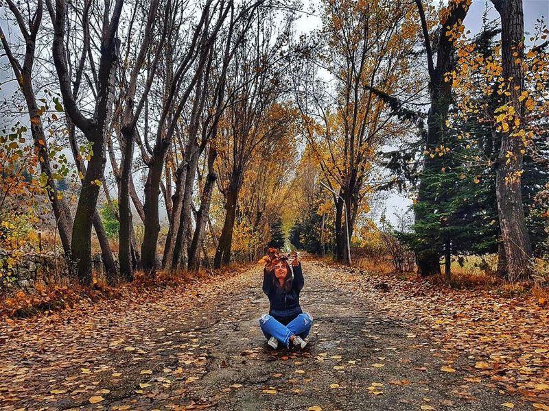 Hello autumn 🍂🍁🍃📸 @pamchemali autumnleaves ..... autumncolors... (El Laklouk, Mont-Liban, Lebanon)