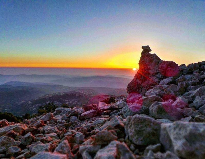Catching the sun above the clouds 🌞~~~~~~~~~~~~~~~~~ nikontop_ ... (Al Shouf Cedar Nature Reserve)