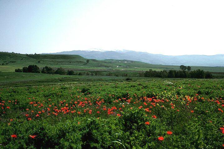 mounthermon insta_lebanon livelovelebanon transfiguration jesus moses... (جبل الشيخ)