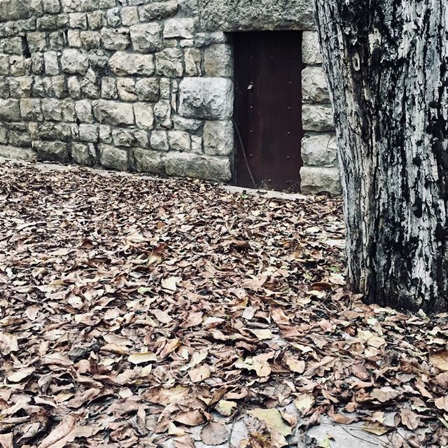 Some doors are meant to be kept closed 🚪🍂....... liveoutdoors ... (Ehmej, Mont-Liban, Lebanon)