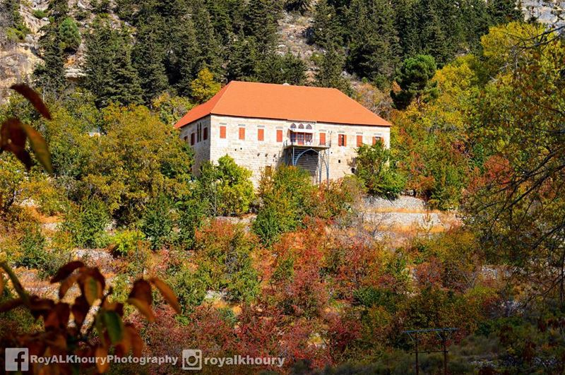 ehden liveloveehden RoyALKhouryPhotography nikon NikonLebanon ... (Ehden, Lebanon)