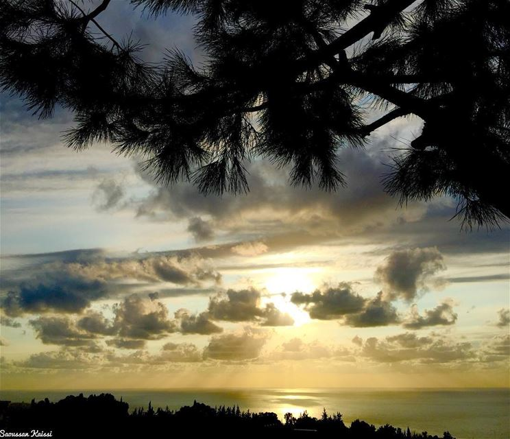 sunset clouds colors🎨 pinetree sea...