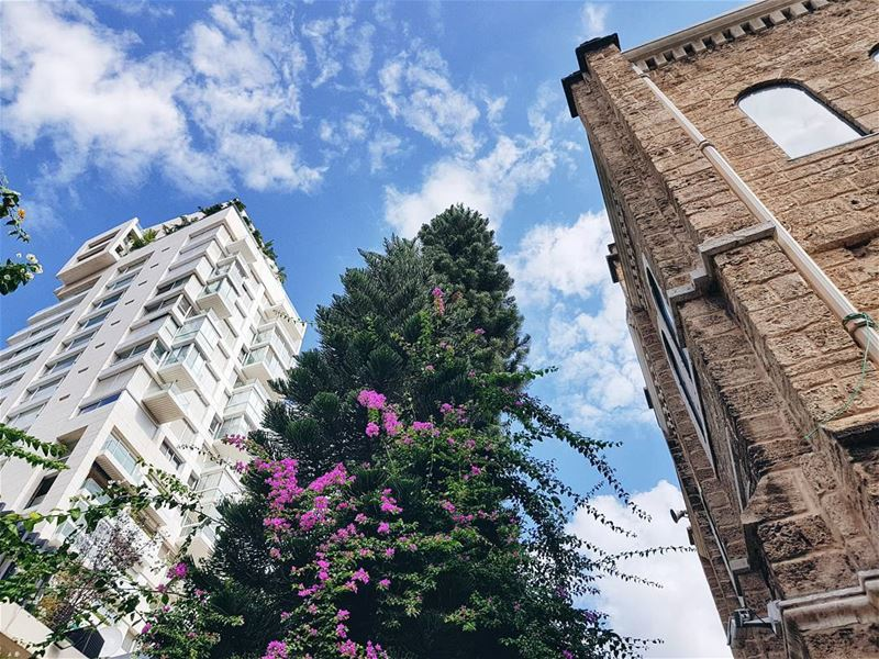 """""""Как ты живешь с этими двуличными пафосными ливанцами?"""" - спросили меня нам (Beirut, Lebanon)"""